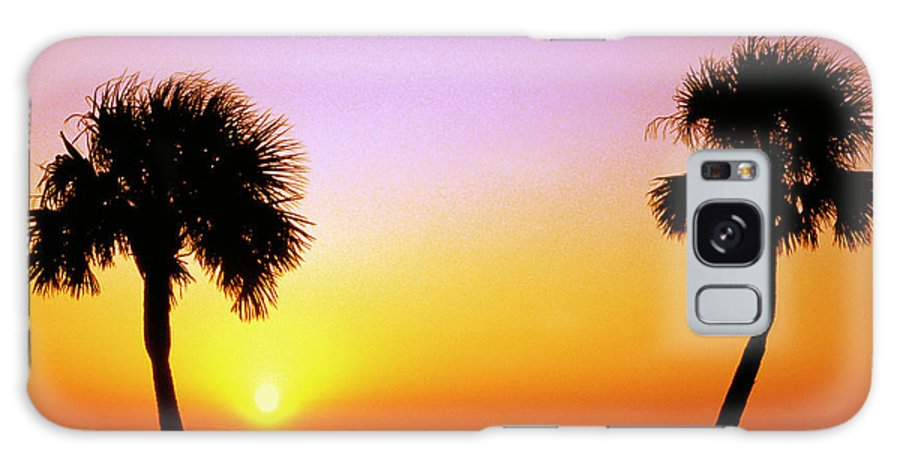 Cabbage Palm Galaxy S8 Case featuring the photograph Jekyll Island Sunrise by Thomas R Fletcher