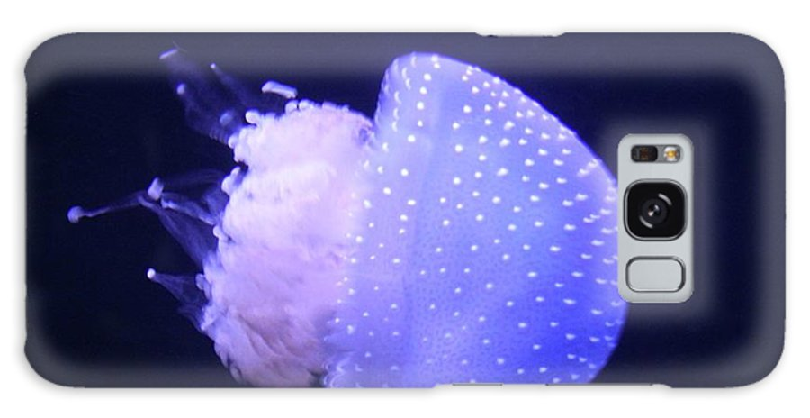 Portugal Galaxy S8 Case featuring the photograph Jellyfish In Motion by Michelli Rios-Allen