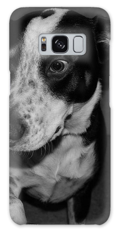 Black And White Galaxy S8 Case featuring the photograph Jimmy by Rob Hans