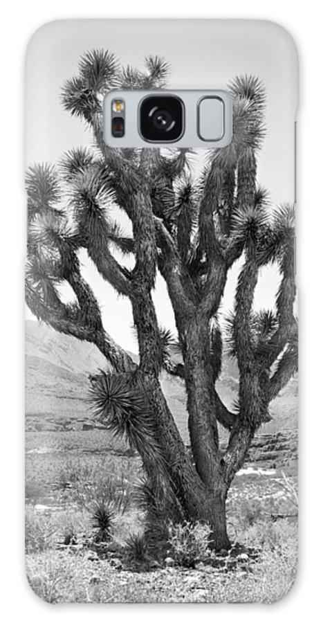 Joshua Tree Galaxy S8 Case featuring the photograph Joshua Tree Bw by Mike McGlothlen