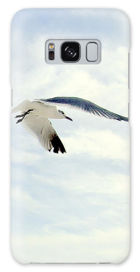 Gulls Galaxy S8 Case featuring the photograph Journey by George I Perez