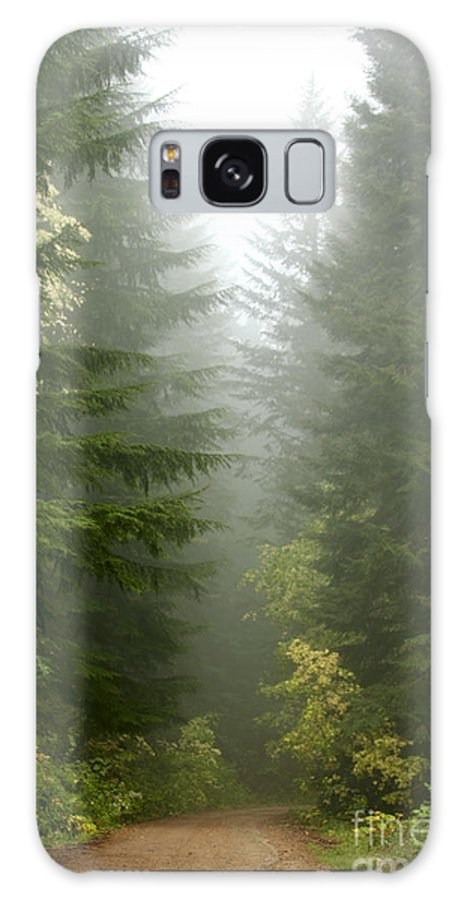 Forest Galaxy Case featuring the photograph Journey Through The Fog by Idaho Scenic Images Linda Lantzy