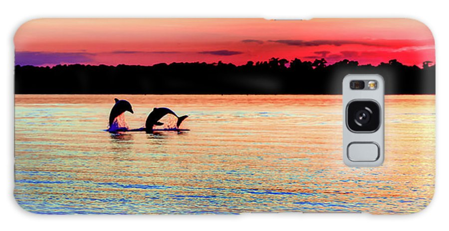 Dolphins Galaxy S8 Case featuring the photograph Joy Of The Dance by Karen Wiles