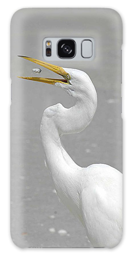 Egret Galaxy S8 Case featuring the photograph Just A Snack by Keith Lovejoy