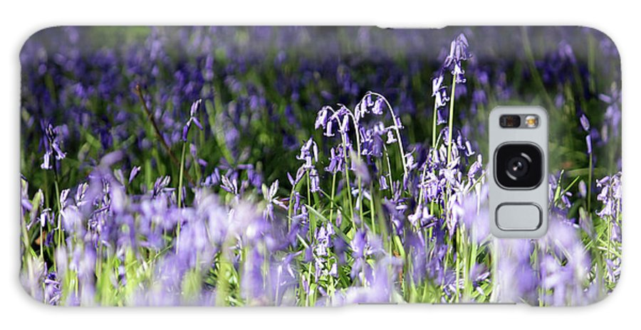 Just Bluebells English Surrey Flowers Bluebell English Bluebells Wood Effingham Surrey Uk Countryside Landscape Blue Flowers Traditional Scene Woodland Bluebell Forest Picturesque Galaxy S8 Case featuring the photograph Just Bluebells by Julia Gavin