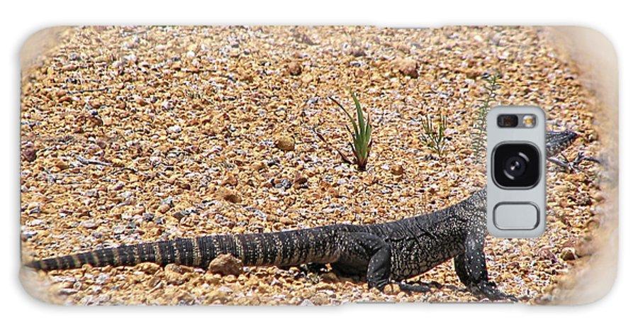 Monitor Lizard Galaxy S8 Case featuring the photograph Kenge by Douglas Barnard