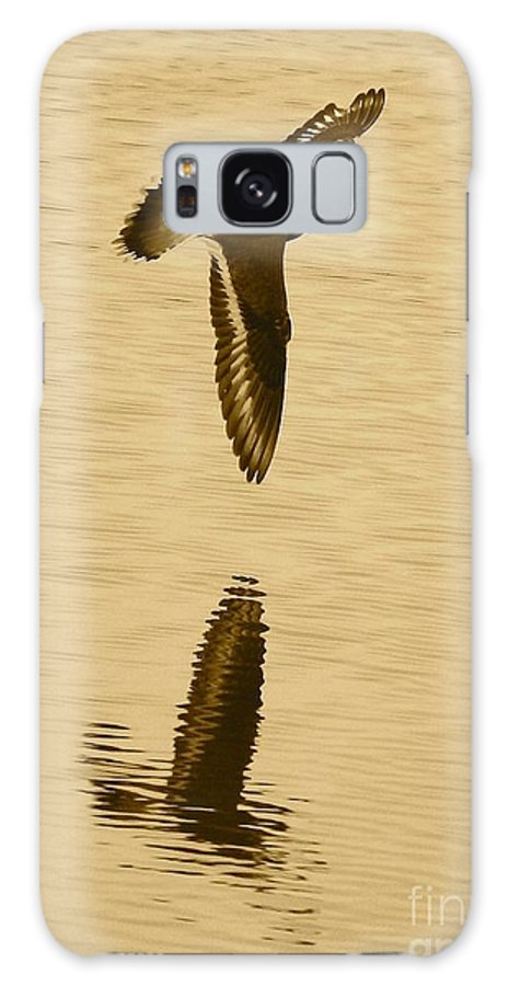 Killdeer Galaxy S8 Case featuring the photograph Killdeer Over The Pond by Carol Groenen