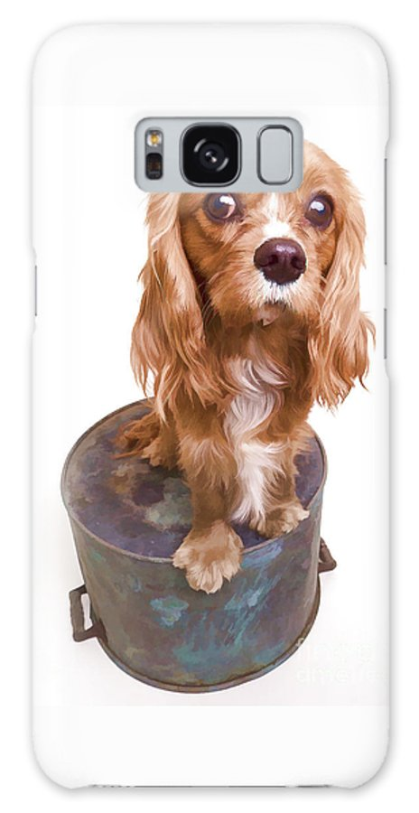 Dog Galaxy Case featuring the photograph King Charles Spaniel Puppy by Edward Fielding