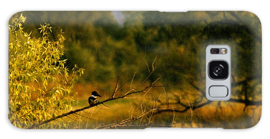 Landscape Galaxy Case featuring the photograph King Fisher by Steve Karol