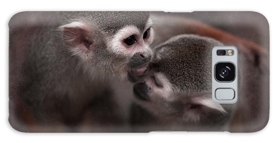 Monkeys Galaxy S8 Case featuring the photograph Kiss Me by Angel Ciesniarska