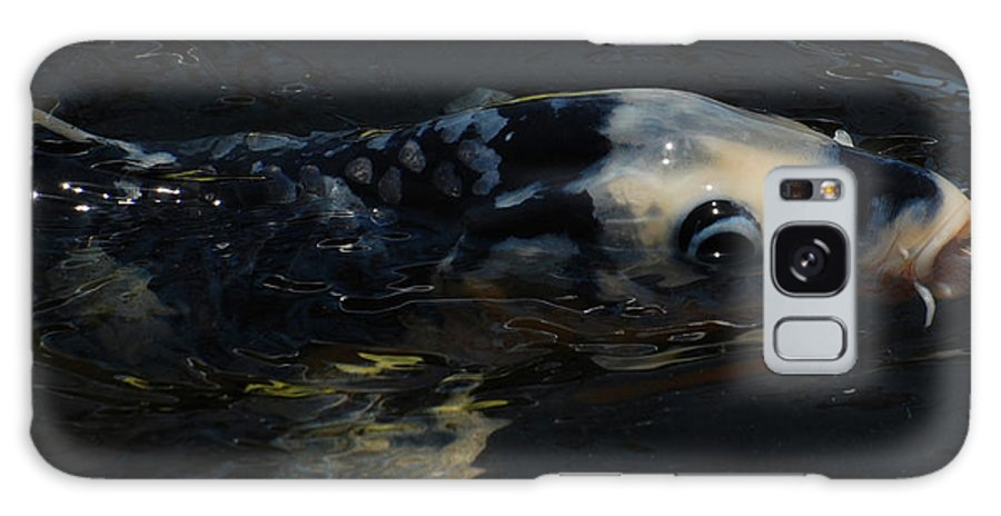 Koi Galaxy S8 Case featuring the photograph Koi by Jean Booth