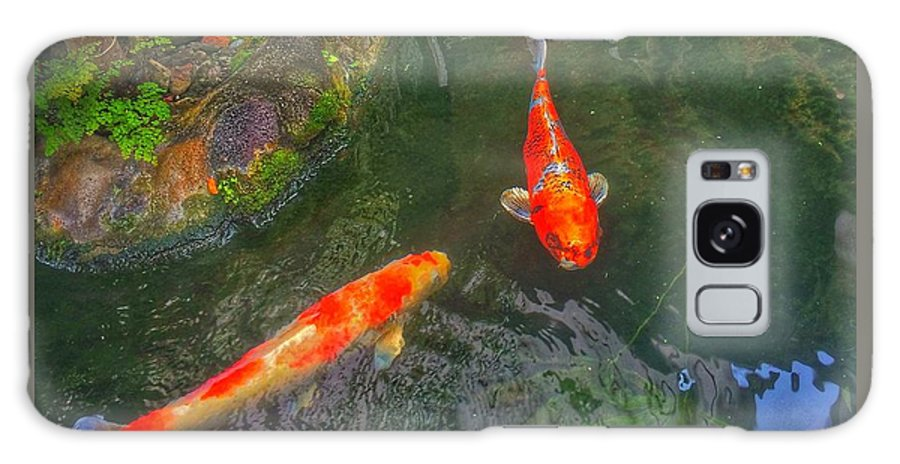 Koi Galaxy S8 Case featuring the photograph Koi Pond by DeWaine Tollefsrud