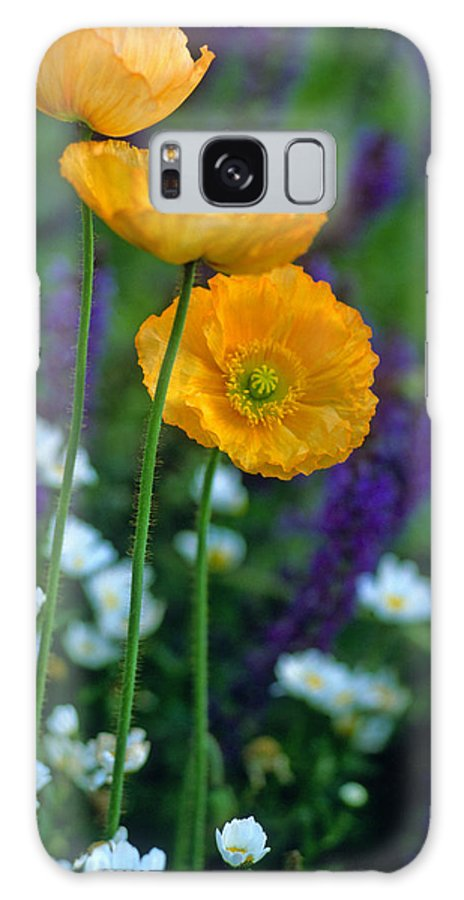 Flowers Galaxy S8 Case featuring the photograph La Playa Poppies by Kathy Yates