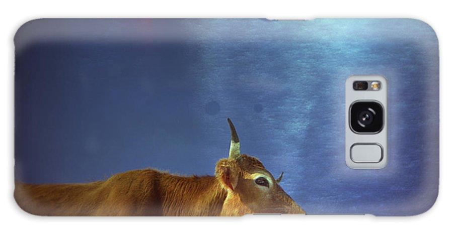 Cow Galaxy S8 Case featuring the photograph La Vache Numerique by Rafa Rivas