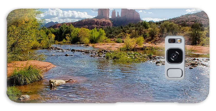 Arizona Galaxy S8 Case featuring the photograph Lab In River At Sedona Arizona by Waterdancer