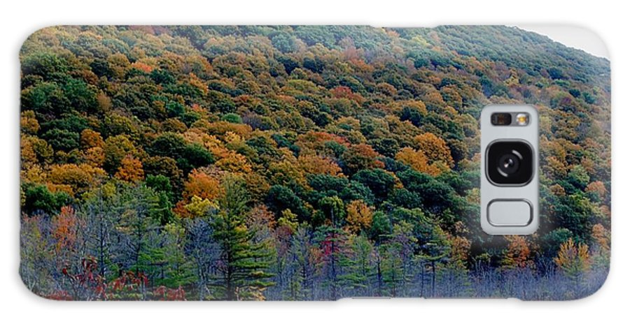 Digital Photograph Galaxy S8 Case featuring the photograph Labrador Pond Hillside by David Lane