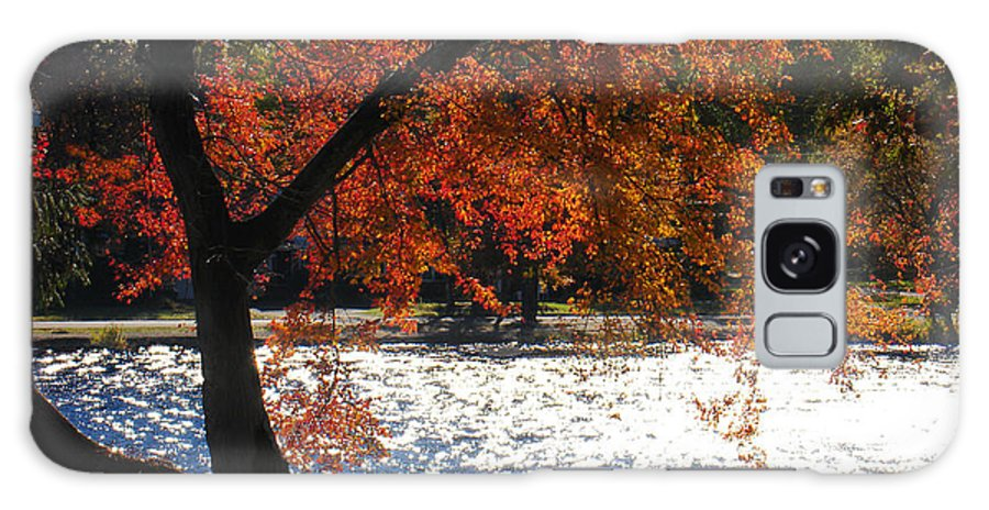 Landscape Galaxy Case featuring the photograph Lakewood by Steve Karol