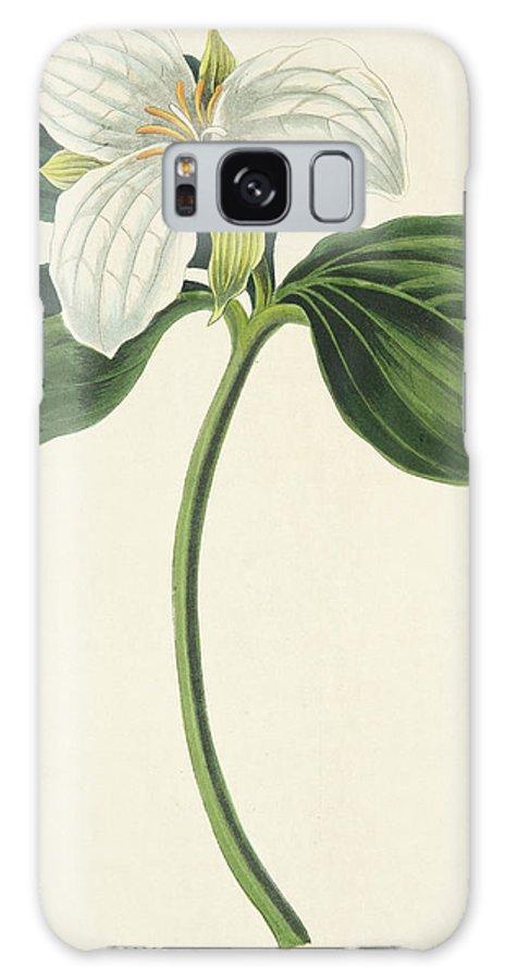 Large Flowered Trillium Galaxy S8 Case featuring the drawing Large Flowered Trillium by Margaret Roscoe