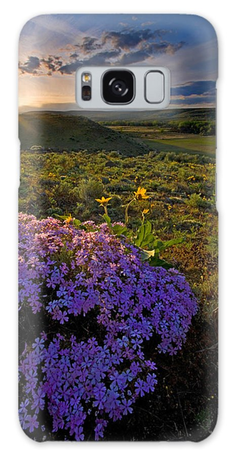 Wildflowers Galaxy Case featuring the photograph Last Light Of Spring by Mike Dawson