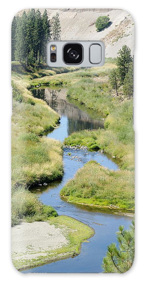 Nature Galaxy S8 Case featuring the photograph Latah Creek by Ben Upham III