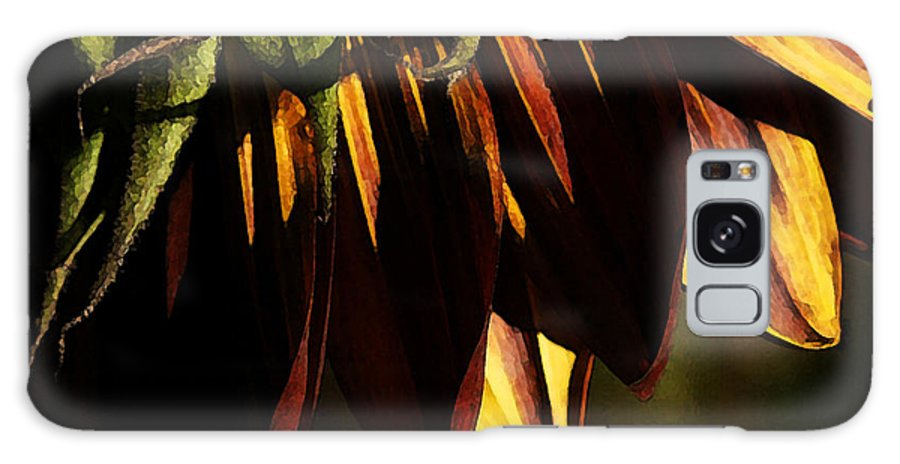 Sunflower Galaxy S8 Case featuring the photograph Late Afternoon by Linda Shafer
