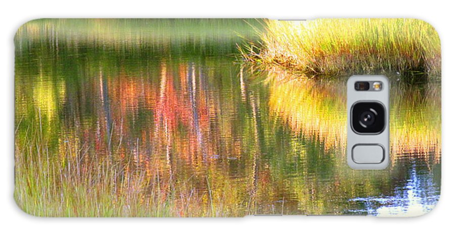 Abstract Galaxy S8 Case featuring the photograph Stillness Of Late Summer Marsh by Sybil Staples