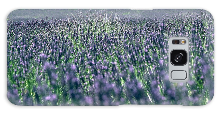 Lavender Galaxy Case featuring the photograph Lavender by Flavia Westerwelle