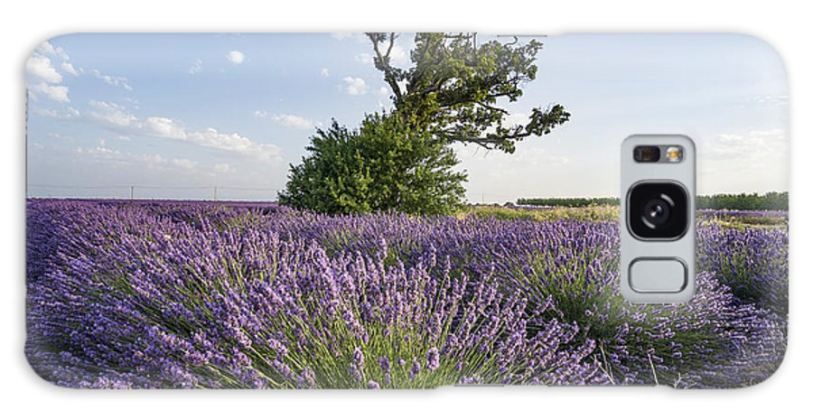 Agrarian Galaxy S8 Case featuring the photograph Lavender Provence by Juergen Held