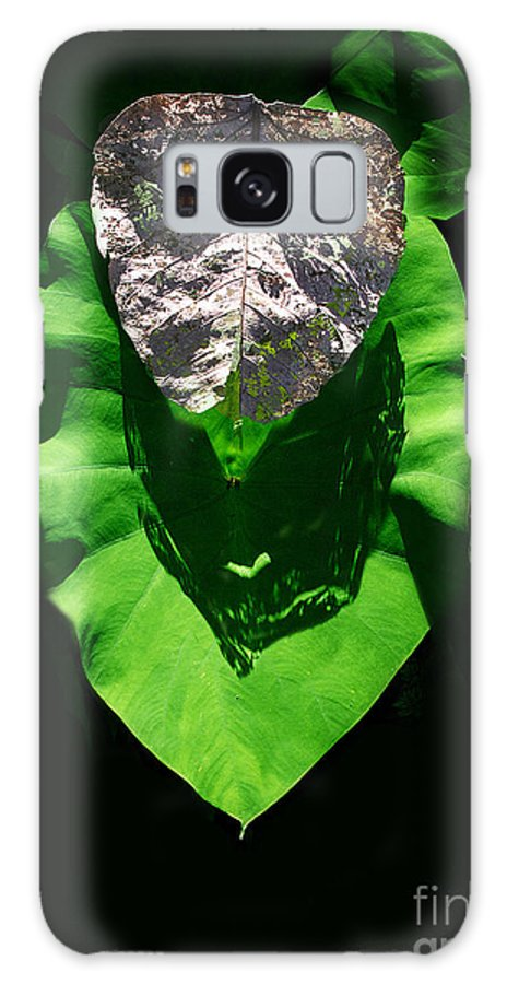 Galaxy Case featuring the photograph Leaf.three Layers by Viktor Savchenko