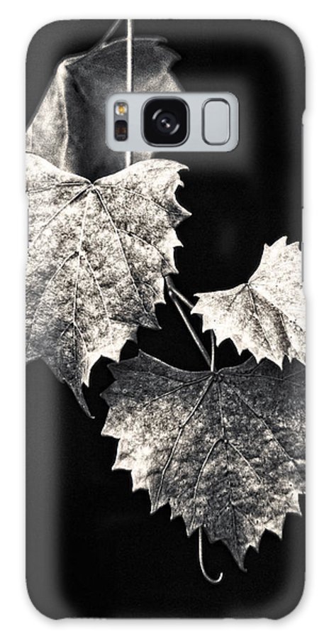 B&w Galaxy S8 Case featuring the photograph Leaves by Christopher Holmes
