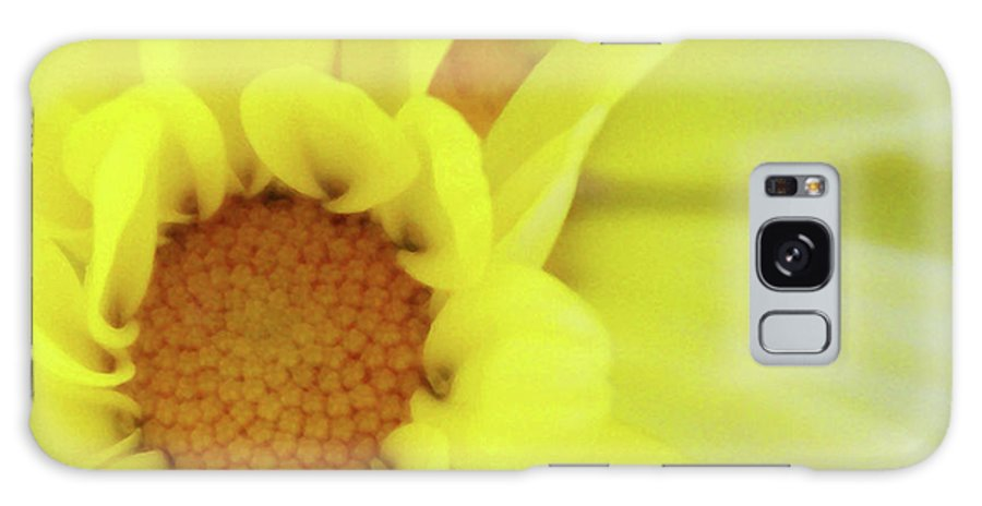 Flower Galaxy S8 Case featuring the photograph Lemon Chiffon by Linda Shafer