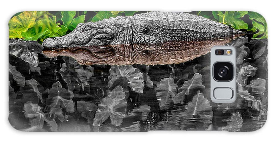 American Galaxy Case featuring the photograph Let Sleeping Gators Lie - Mod by Christopher Holmes