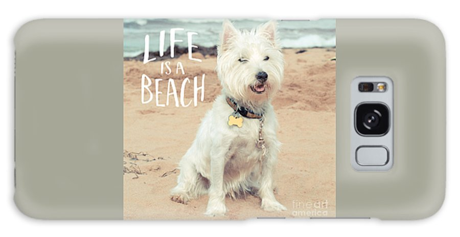 Dog Galaxy Case featuring the photograph Life Is A Beach Dog Square by Edward Fielding