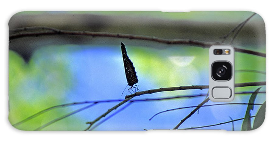 Butterfly Galaxy S8 Case featuring the photograph Life On The Edge by Randy Oberg