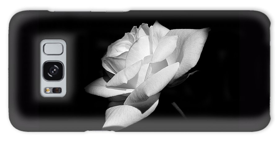 Rose Galaxy S8 Case featuring the photograph Light On Rose Black And White by Jennie Marie Schell