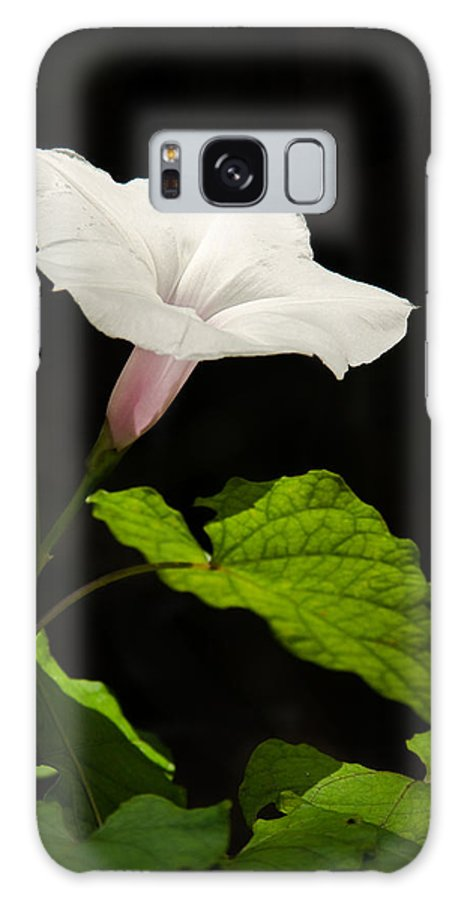 Flower Galaxy Case featuring the photograph Light Out Of The Dark by Christopher Holmes