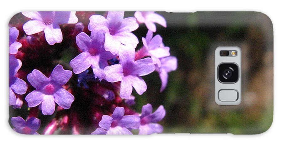 Lilac Galaxy Case featuring the photograph Lilac by Melissa Parks