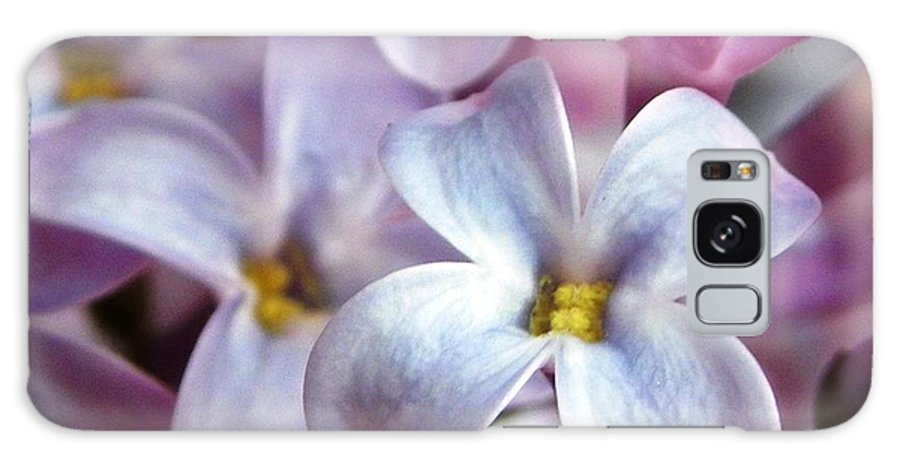 Nature Galaxy S8 Case featuring the photograph Lilac by Peggy King