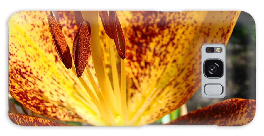 Lilies Galaxy S8 Case featuring the photograph Lilies Glowing Orange Lily Flower Floral Art Print Canvas Baslee Troutman by Baslee Troutman
