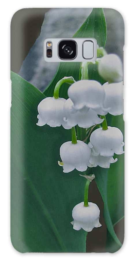 Lily Bells Galaxy S8 Case featuring the photograph Lily Bells by Debra   Vatalaro