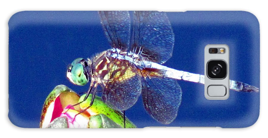 Dragonfly Galaxy S8 Case featuring the photograph Lily Helper by Paul Slebodnick