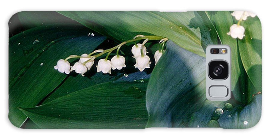 Flower Galaxy S8 Case featuring the photograph Lily Of The Valley by Corinne Elizabeth Cowherd