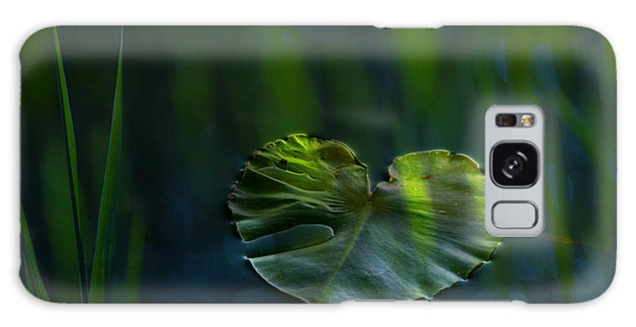 Lily Galaxy Case featuring the photograph Lily Pad by Silke Magino