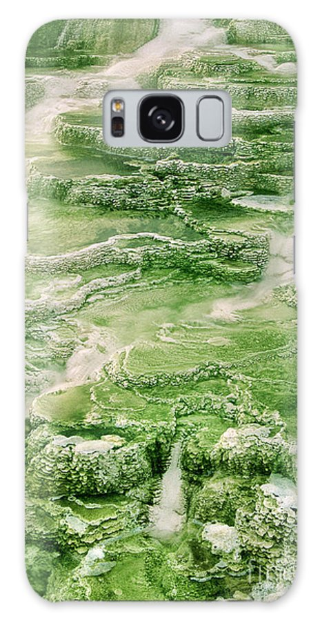 North America Galaxy S8 Case featuring the photograph Limestone Detail Minerva Springs Yellowstone National Park by Dave Welling