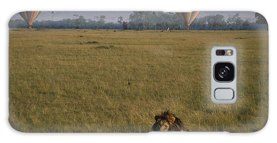 Lion Galaxy Case featuring the photograph Lion Ignores Balloons by Carl Purcell