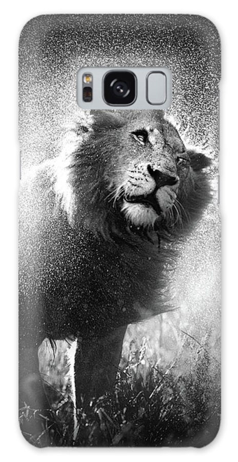 Lion Galaxy S8 Case featuring the photograph Lion Shaking Off Water by Johan Swanepoel