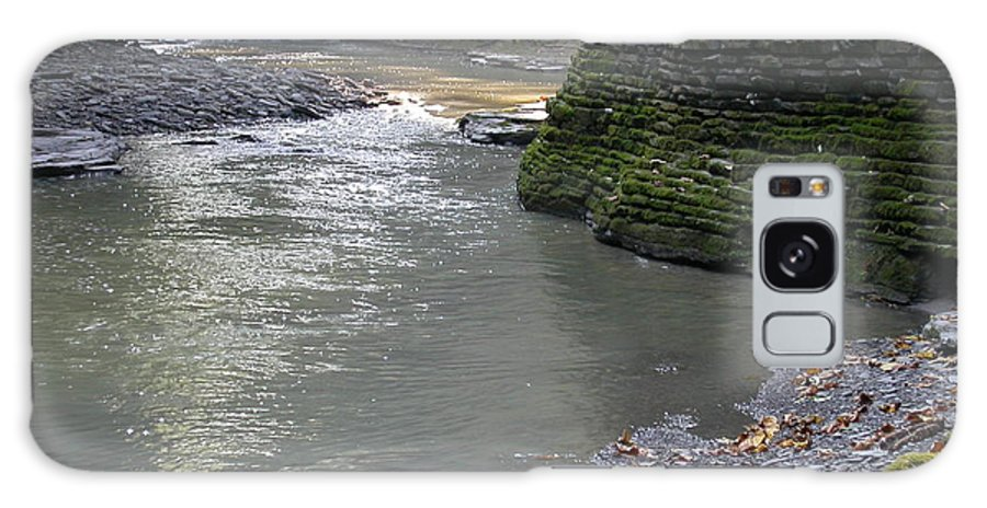 Watkins Glen Galaxy Case featuring the photograph Little Ray Of Sunshine by Linda Murphy