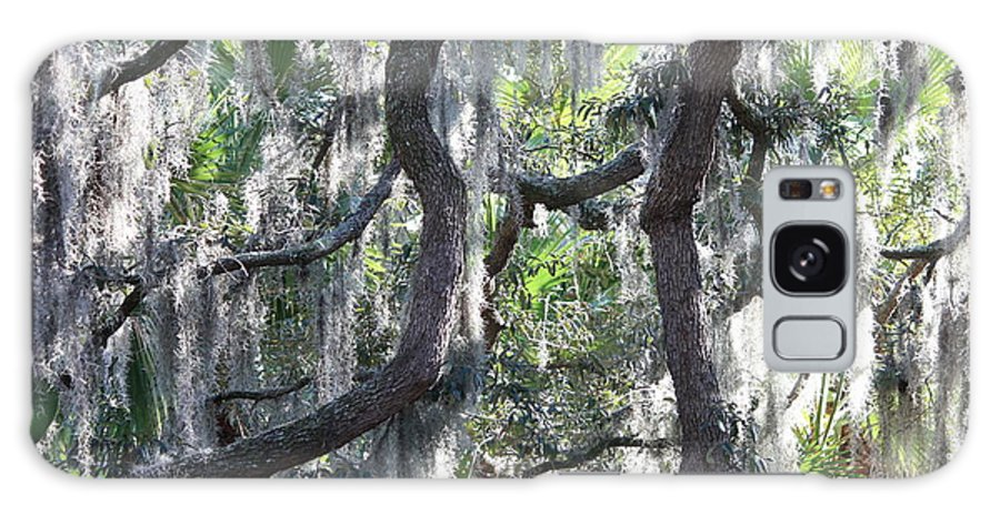 Spanish Moss Galaxy S8 Case featuring the photograph Live Oak With Spanish Moss And Palms by Carol Groenen