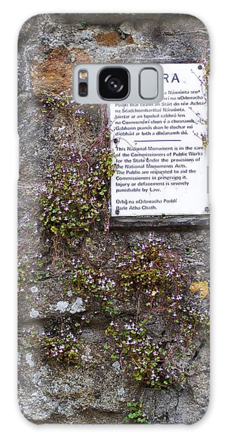 Irish Galaxy Case featuring the photograph Living Wall At Donegal Castle Ireland by Teresa Mucha