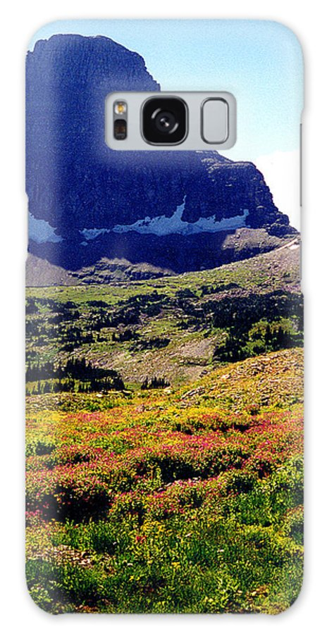 Glacier National Park Galaxy Case featuring the photograph Logans Pass In Glacier National Park by Nancy Mueller